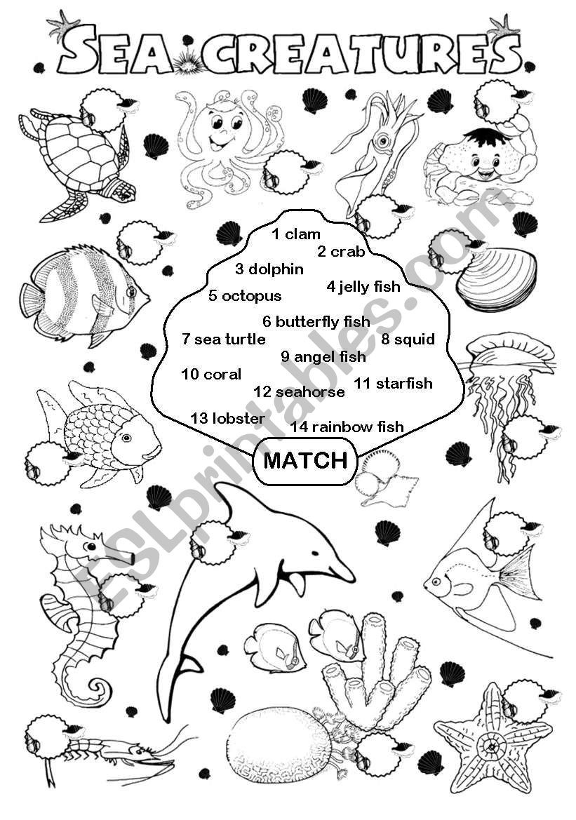 Rainbow Fish Printable Worksheets Sea Creatures Esl Worksheet by Gabitza