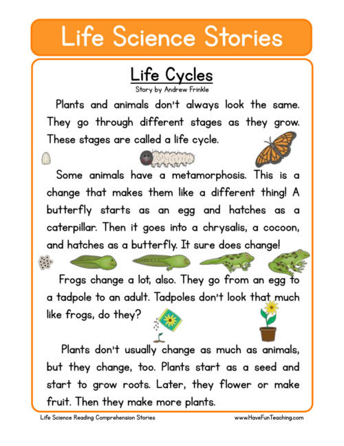 Science Worksheet 1st Grade Plants Worksheets Have Fun Teaching Plant for 3rd Grade Life