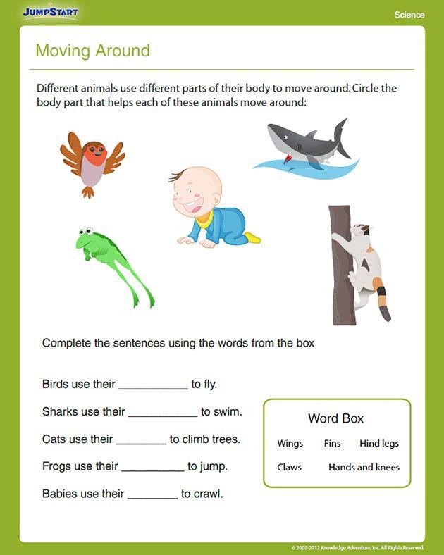 Science Worksheet First Grade 1st Grade Science Worksheets