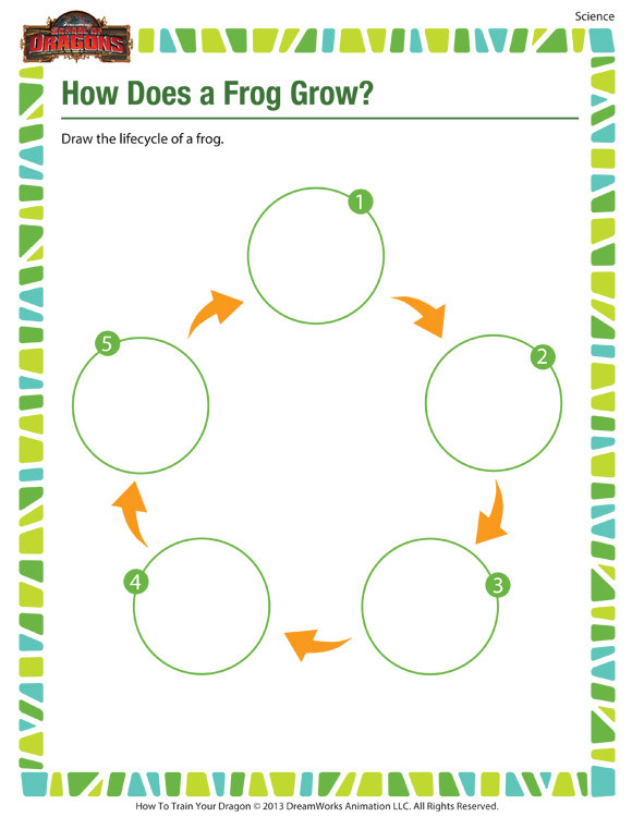 Second Grade Science Worksheets Free How Does A Frog Grow – Free 2nd Grade Science Worksheet
