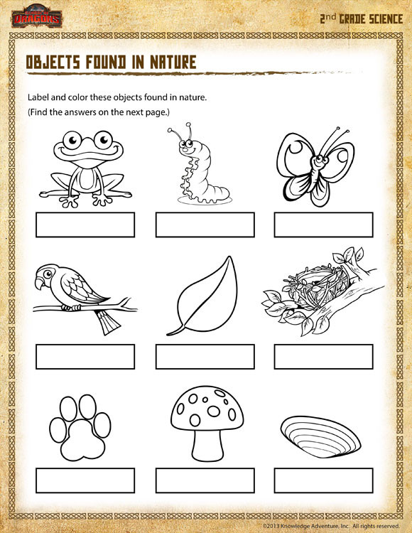 Second Grade Science Worksheets Free Objects Found In Nature View – 2nd Grade Science Worksheet sod