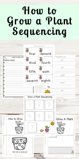 Sequence Worksheets for Kindergarten Free Grow A Plant Sequencing Worksheets