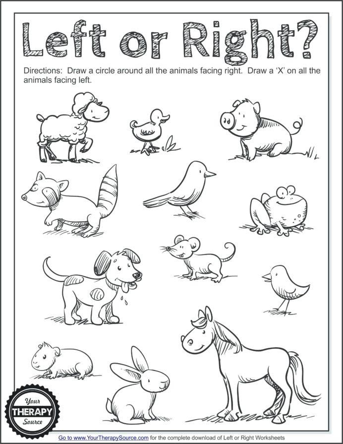 Social Studies Worksheets for Kindergarten Worksheets Kids Drawing for Worksheet Double Digit Addition