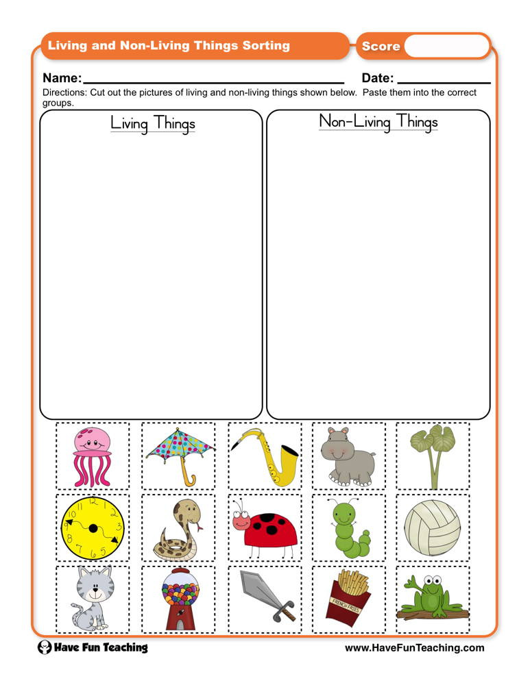 Sorting Worksheets for First Grade Living Things and Non Living Things sorting Worksheet