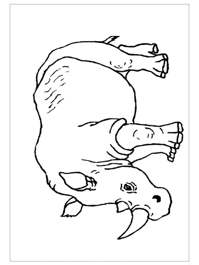 Spanish Kindergarten Worksheets Zoo Animal Math Coloring Worksheets Printable and