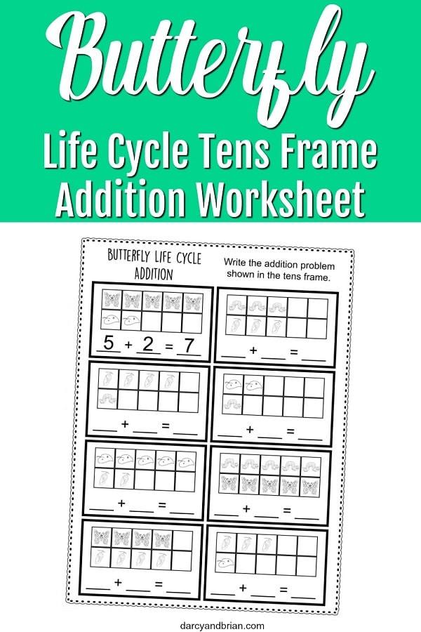 Ten Frame Worksheets Kindergarten Worksheet butterfly Frame Worksheet Pin Life Cycle