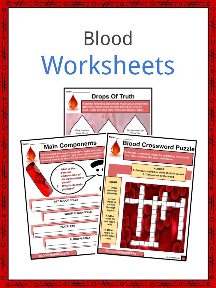 Typing Worksheets Printables Blood Facts Worksheets & Constitutes for Kids