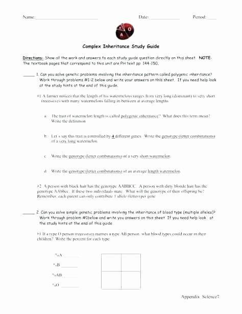 Typing Worksheets Printables Printable Keyboarding Worksheets Awesome Typing Practice