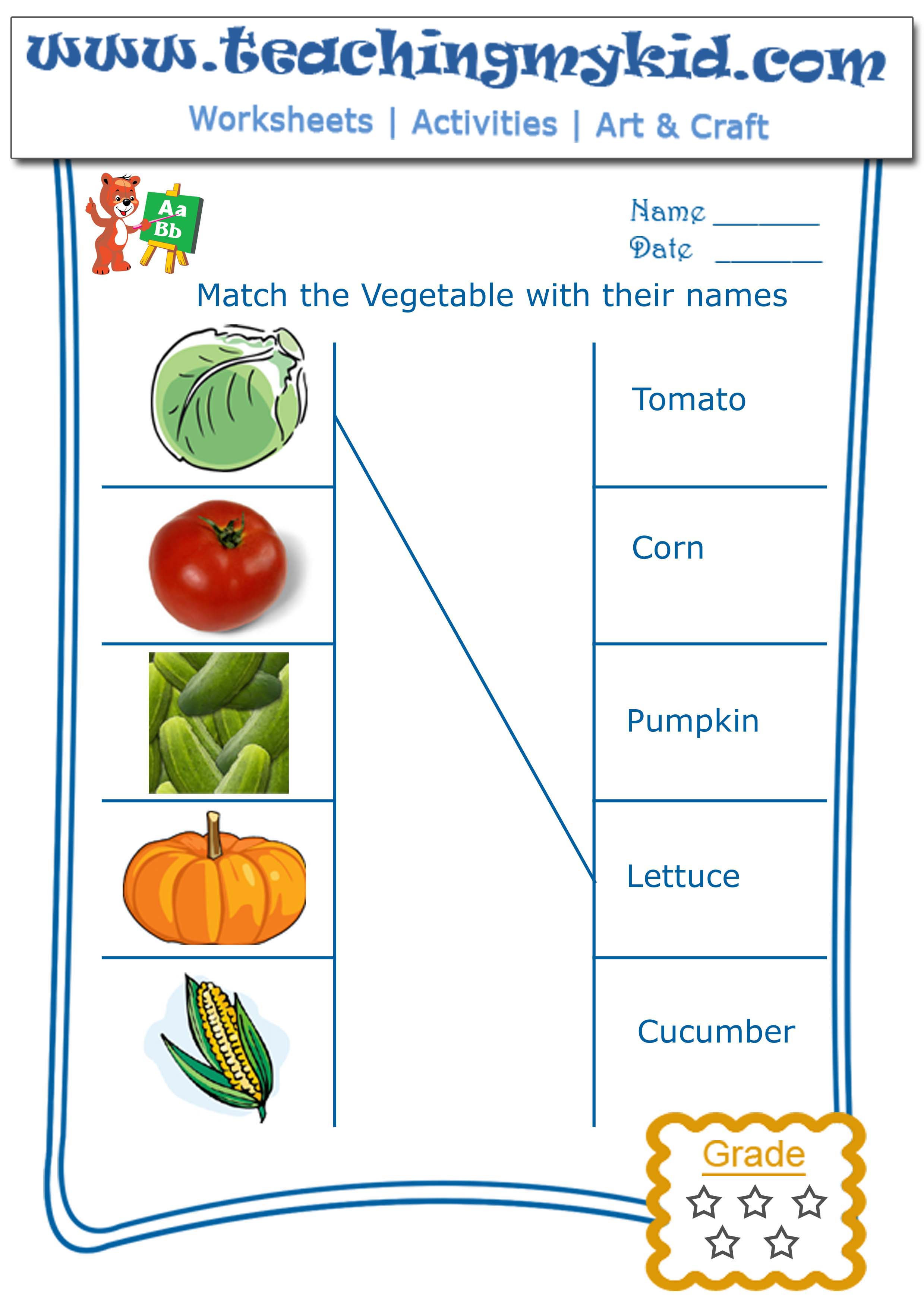Vegetables Worksheets for Kindergarten Kindergarten Worksheet Match Ve Ables with their Names 2
