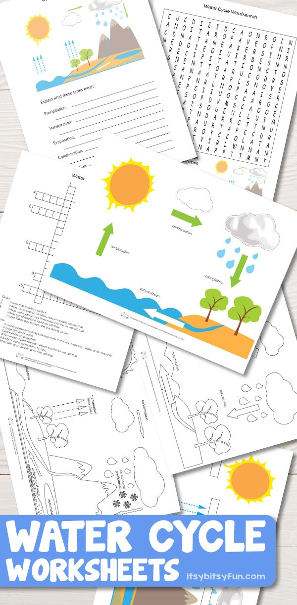 Water Cycle Worksheet Kindergarten Free Printable Water Cycle Worksheets Diagrams Itsy
