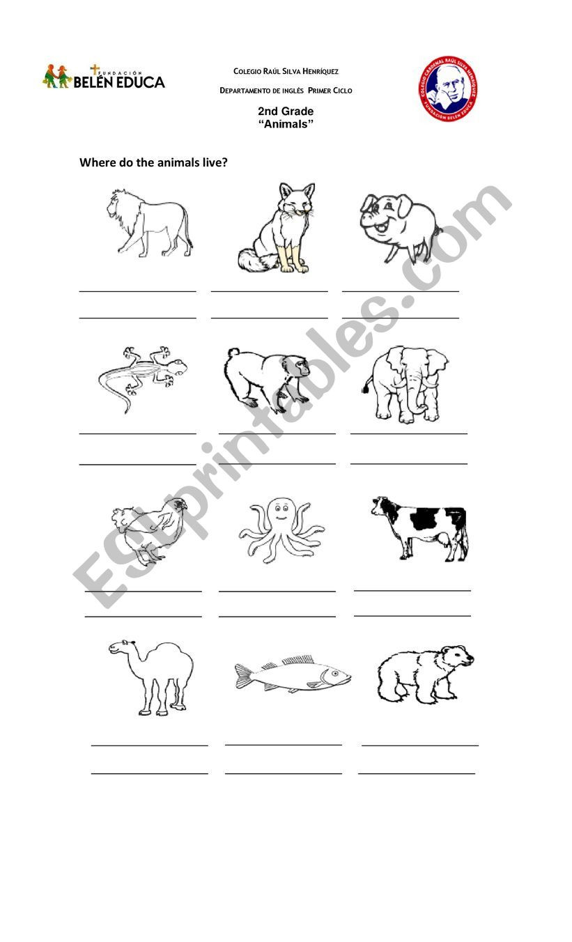 2nd Grade Habitat Worksheets Animals Habitat Esl Worksheet by Lilycaro