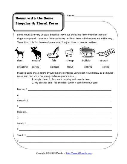 2nd Grade Noun Worksheets Same Singular and Plural Nouns 2nd Grade Noun Worksheet