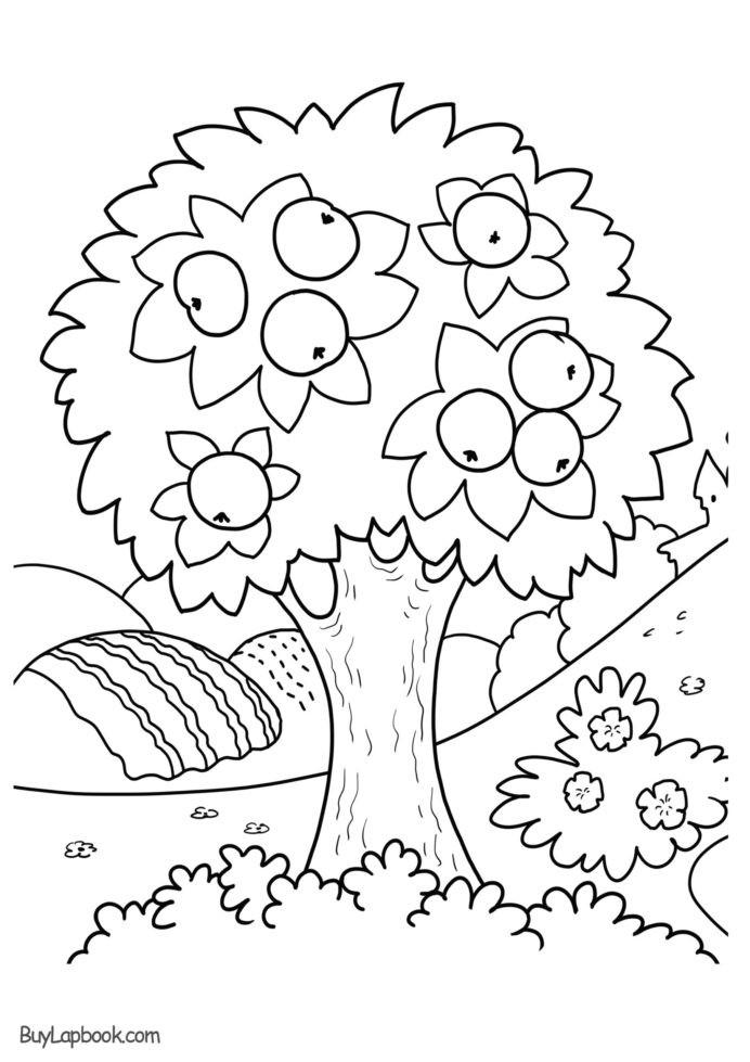 Apple Worksheets Preschool Worksheet Coloring Apple Tree Free Printable Buylapbook