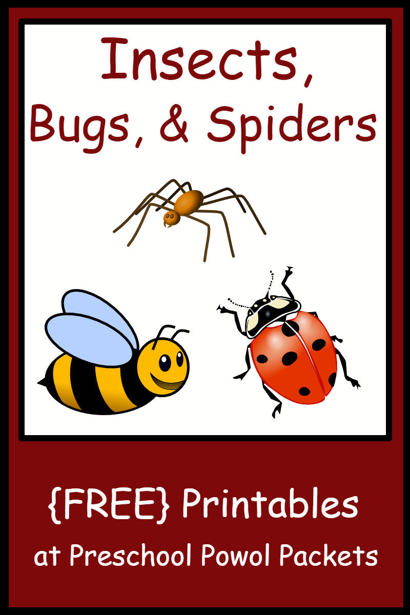 Bug Worksheets for Preschool Insect Bug & Spider themed Free Preschool Printables
