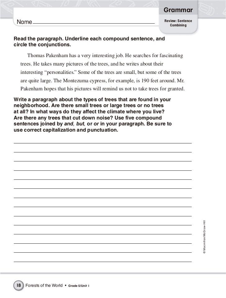 Combining Sentences Worksheets 5th Grade English Grammar 5th Grade
