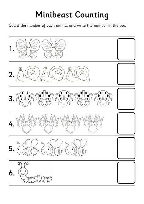 Counting Worksheets Preschool Bugs Count Number Worksheet
