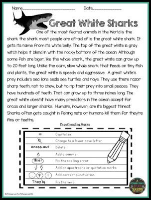 Editing Worksheet 3rd Grade Proofreading and Editing Reading Prehension Passages