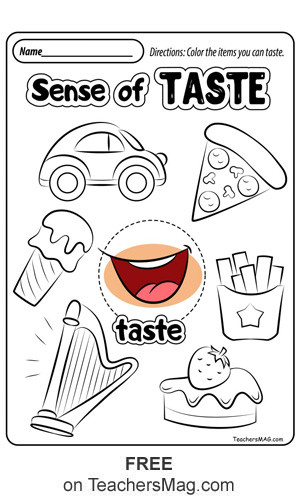 Five Senses Worksheets Preschool Free Five Senses Worksheets