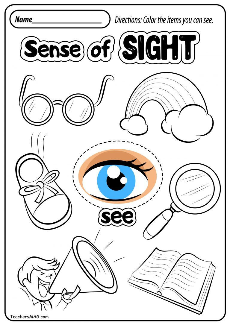 Five Senses Worksheets Preschool Free Five Senses Worksheets with Images