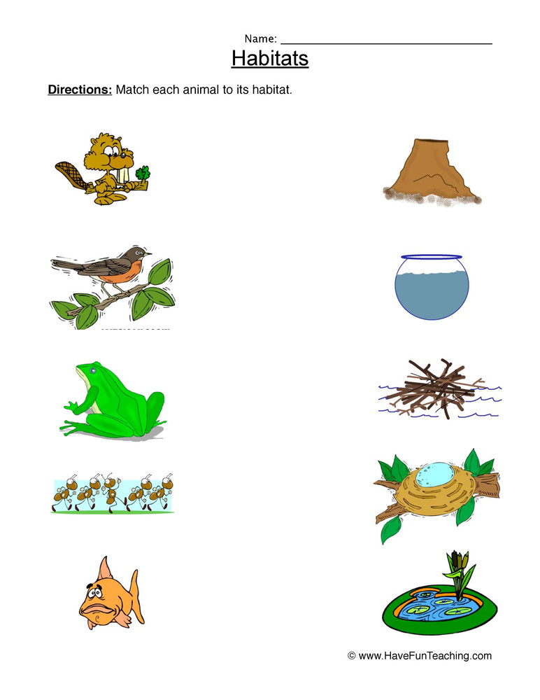 Habitat Worksheets for 1st Grade Animal Habitats Matching Worksheet