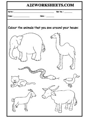 Habitat Worksheets for 1st Grade Worksheet 06 Animals Around Your Home