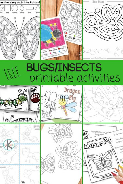 Insect Worksheets for First Grade 28 Free Insect Worksheets