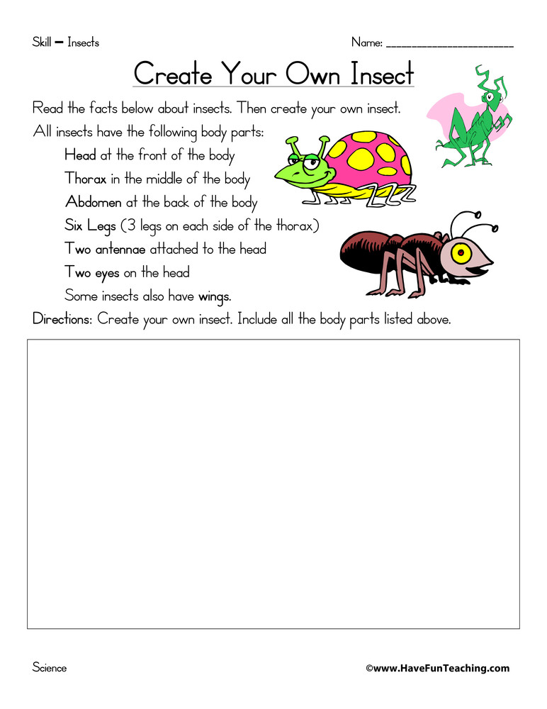 Insect Worksheets for First Grade Create Your Own Insect Worksheet