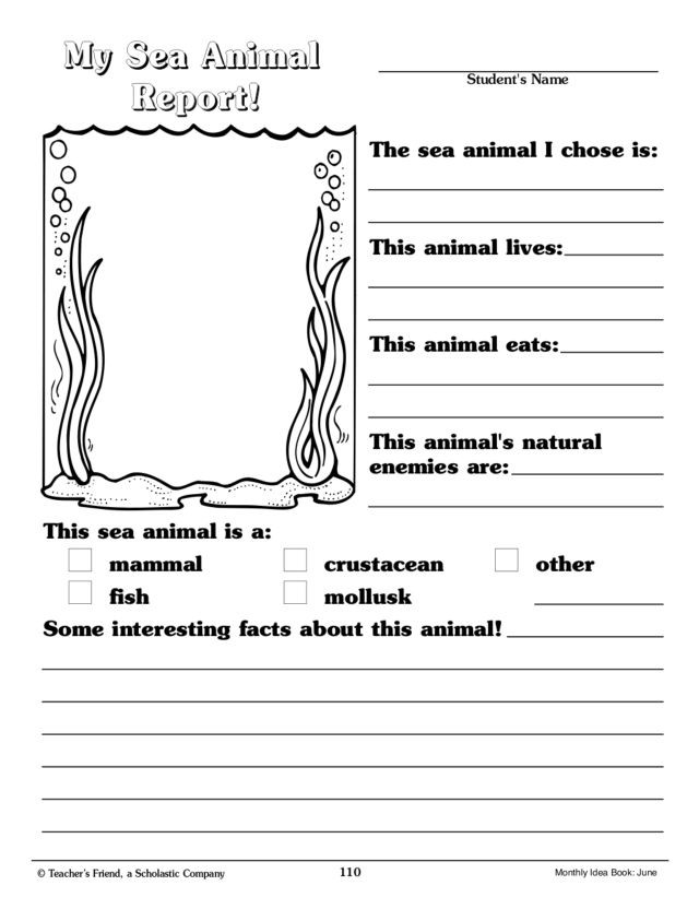 Ocean Worksheets for 2nd Grade My Sea Animal Report Graphic organizer for 2nd 3rd Grade