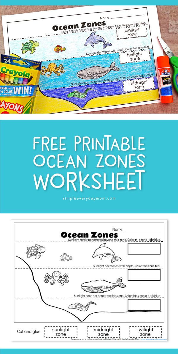 Ocean Worksheets for 2nd Grade Ocean Zones for Kids Learning About the Amazing Ocean