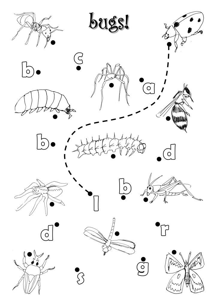 Preschool Bug Worksheets Bugs Worksheet by Azamiryouviantart On Deviantart