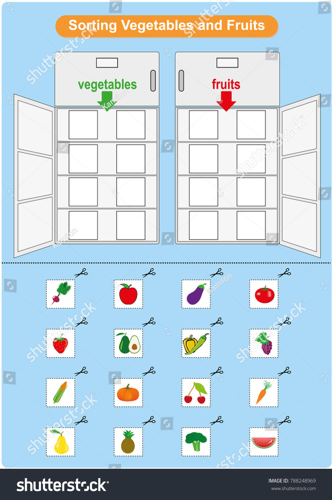 Preschool Fruits and Vegetables Worksheets sorting Fruits Ve Ables Inrefrigerator Worksheet